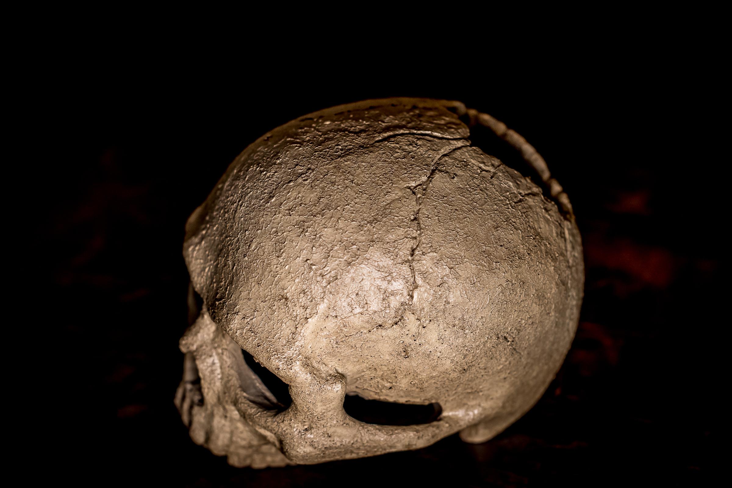 Prähistorischer Mordfall?