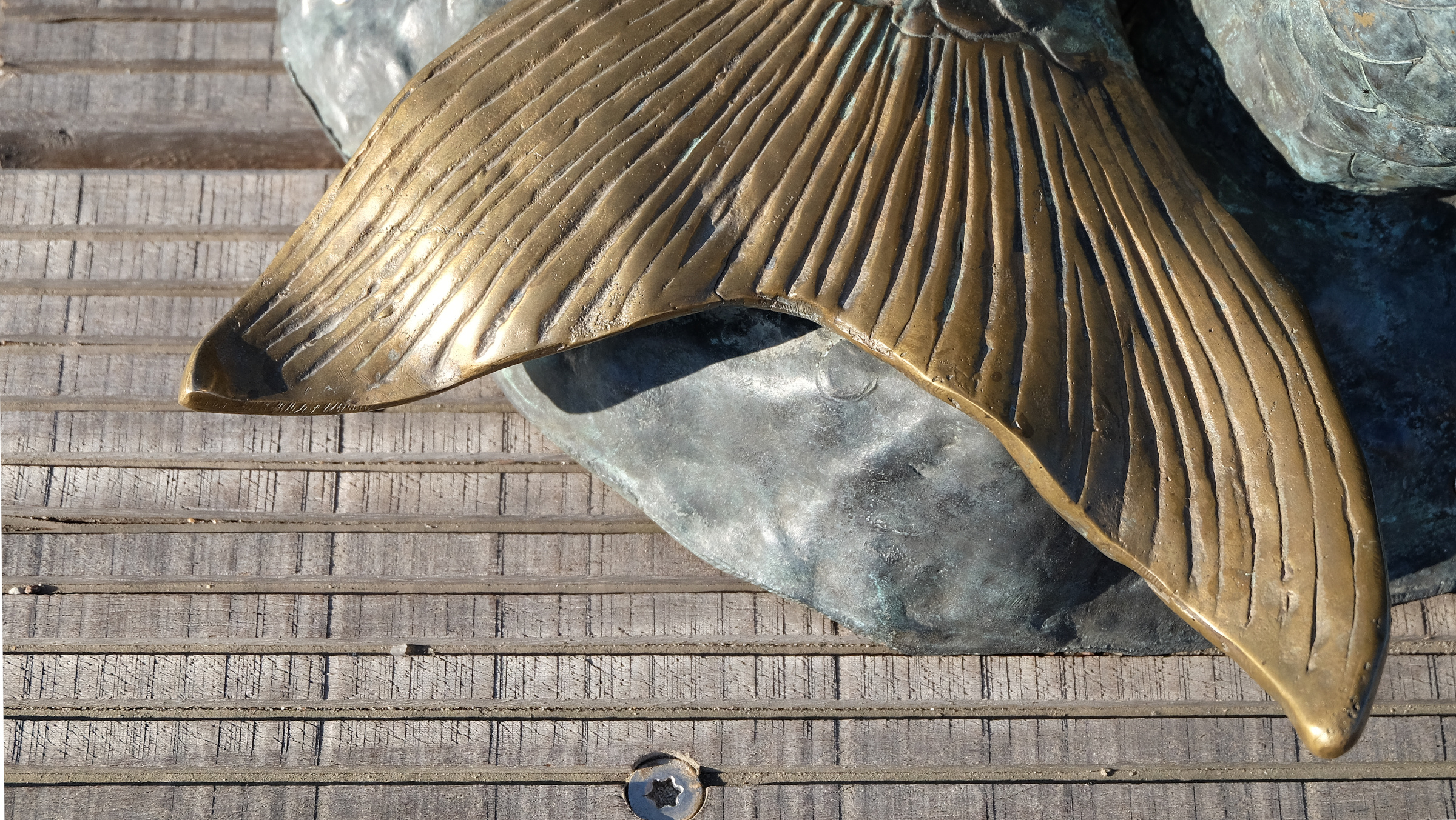 Zipfel einer Meersjungfrauenflosse