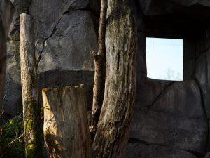 Abstrakt im Zoo FFM